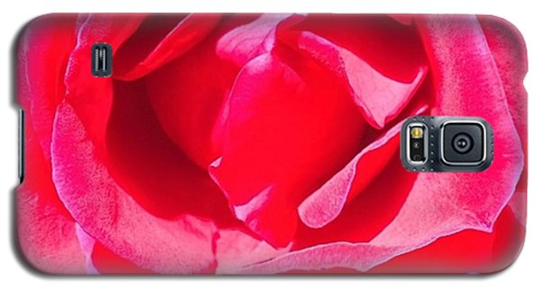 Detail Galaxy S5 Case - #roses Are #red ...#violets Are #blue by Shari Warren