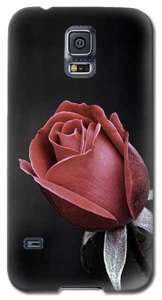 Galaxy S5 Case featuring the photograph Roses Are Red by William Havle