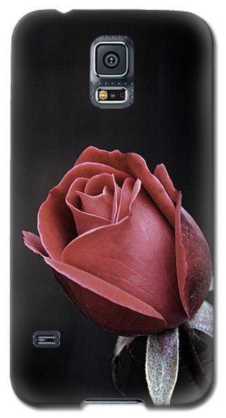Roses Are Red Galaxy S5 Case by William Havle
