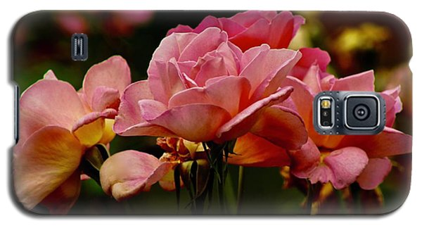 Roses By The Bunch Galaxy S5 Case