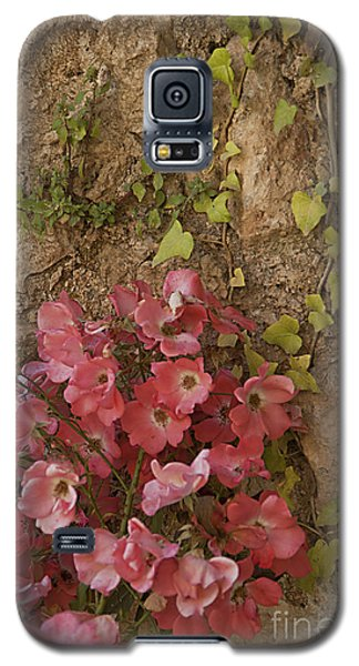 Roses In Spain Galaxy S5 Case