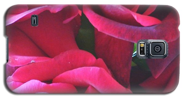 Roses Like Velvet Galaxy S5 Case by Dana Patterson