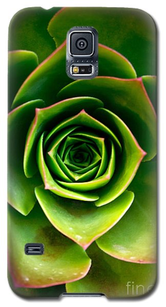 Rosette Galaxy S5 Case by Nadya Ost