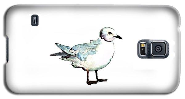 Ross's Gull Galaxy S5 Case