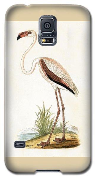 Rosy Flamingo Galaxy S5 Case