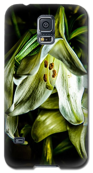 Rough And Droopy White Lily Galaxy S5 Case