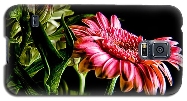 Rough Red Daisy With Greenery Galaxy S5 Case