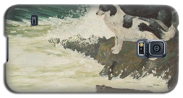 Roughsea Galaxy S5 Case by Terry Frederick