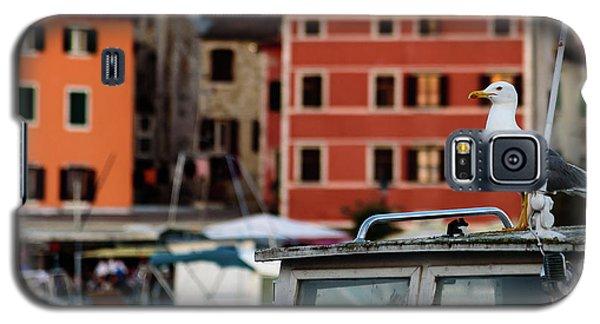 Rovinj Harbor Seagull - Rovinj, Istria, Croatia Galaxy S5 Case