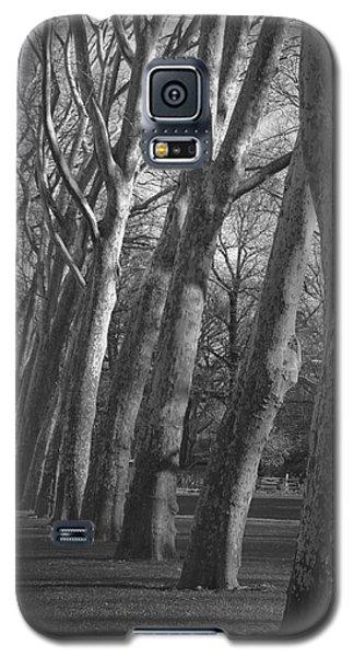 Row Trees Galaxy S5 Case