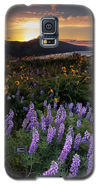 Galaxy S5 Case featuring the photograph Rowena  Dawn by Mike Lang