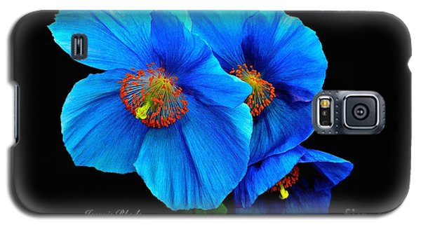 Royal Blue Poppies Galaxy S5 Case