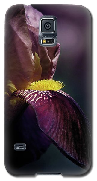 Royal Flush Galaxy S5 Case