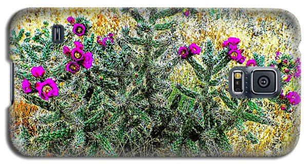 Royal Gorge Cactus With Flowers Galaxy S5 Case