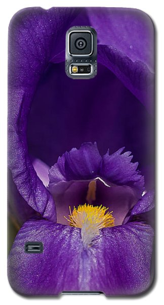 Gold With Royal Purple Robes Galaxy S5 Case