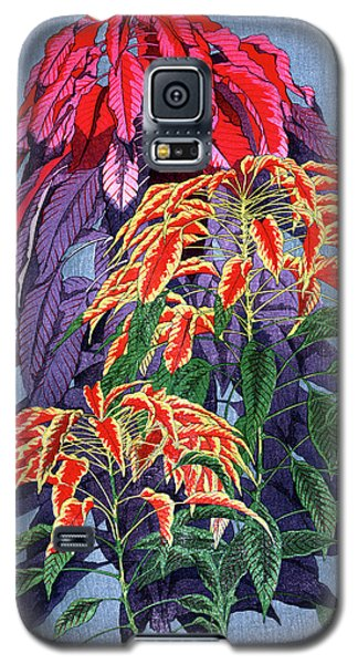 Roys Collection 6 Galaxy S5 Case