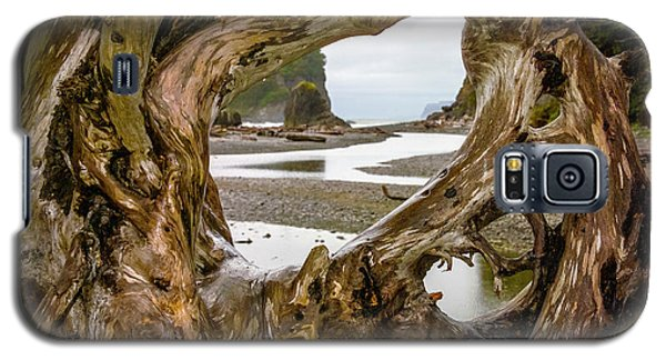 Ruby Beach Driftwood 2007 Galaxy S5 Case