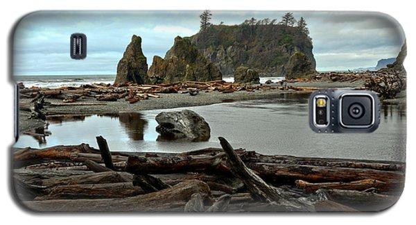 Ruby Beach Driftwood Galaxy S5 Case