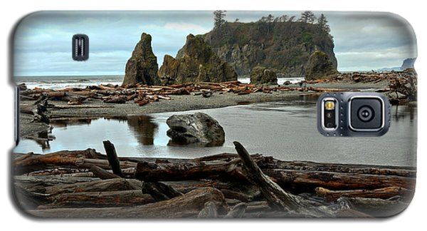 Ruby Beach Driftwood Galaxy S5 Case