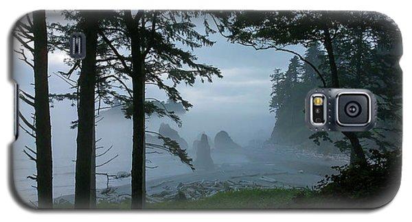 Ruby Beach II Washington State Galaxy S5 Case by Greg Reed
