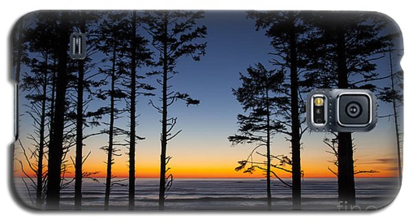 Ruby Beach Trees #4 Galaxy S5 Case