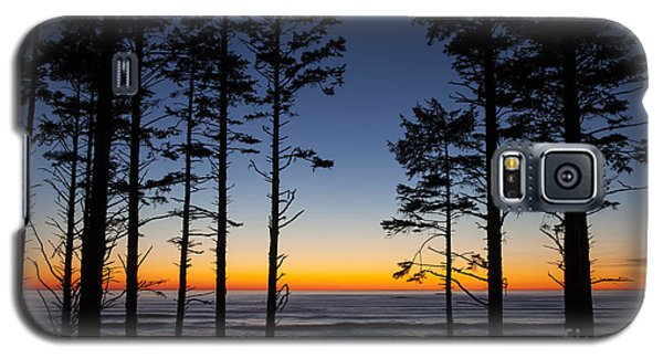 Ruby Beach Trees #4 Galaxy S5 Case