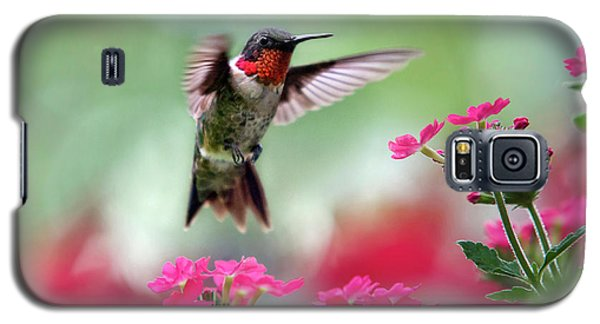 Ruby Garden Jewel Galaxy S5 Case by Christina Rollo