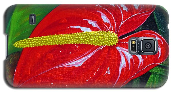 Ruby Holiday Galaxy S5 Case by Debbie Chamberlin