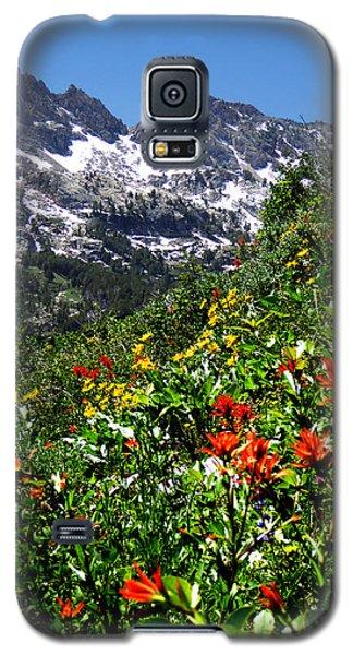 Ruby Mountain Wildflowers - Vertical Galaxy S5 Case by Alan Socolik