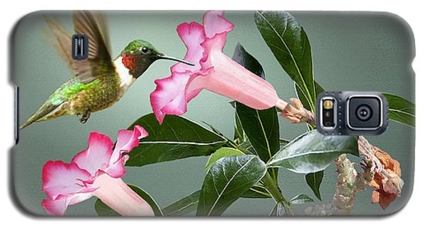 Ruby-throated Hummingbird And Desert Rose Galaxy S5 Case