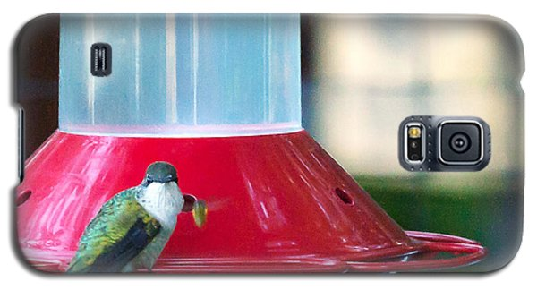 Galaxy S5 Case featuring the photograph Ruby-throated Hummingbird At Feeder by Edward Peterson