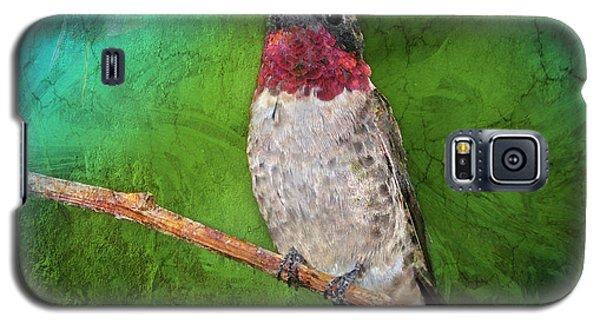 Ruby Throated Hummingbird Galaxy S5 Case by Betty LaRue
