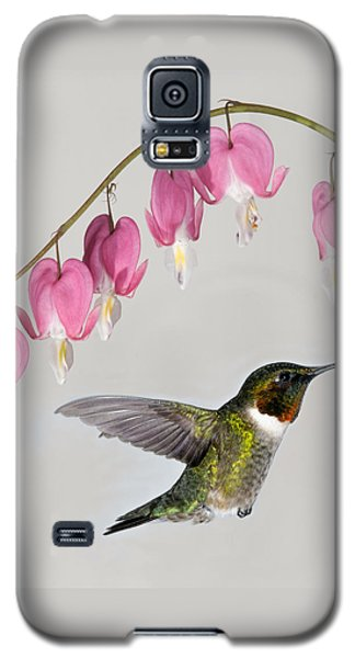 Galaxy S5 Case featuring the photograph Ruby-throated Hummingbird With Bleeding Hearts by Lara Ellis