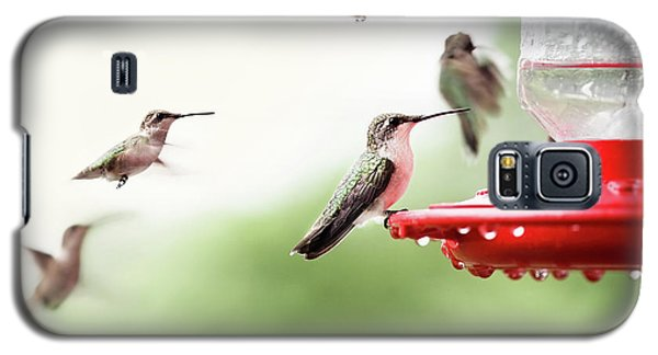 Galaxy S5 Case featuring the photograph Ruby-throated Hummingbirds by Stephanie Frey