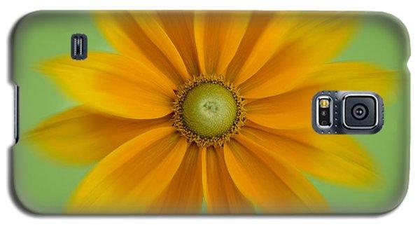 Rudbeckia Blossom Irish Eyes - Square Galaxy S5 Case by Patti Deters