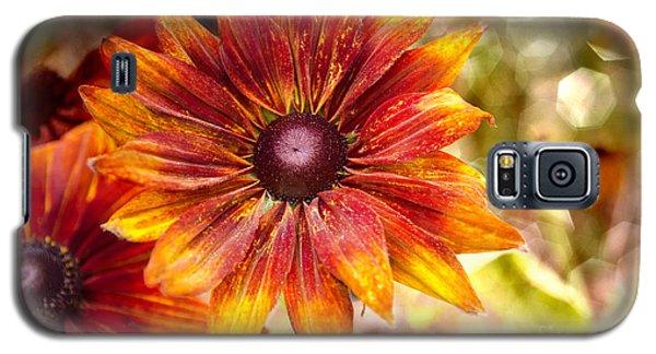Rudbeckias With Sparkly Bokeh Galaxy S5 Case by Maria Janicki