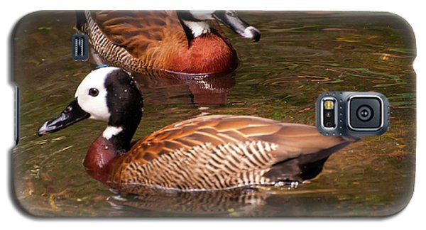 White-faced Whistling Duck Galaxy S5 Case by Chris Flees