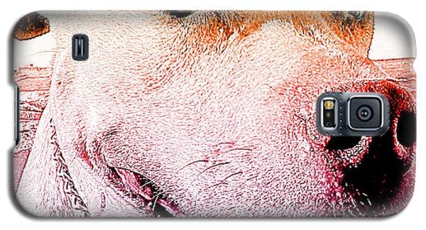 Rudy Galaxy S5 Case