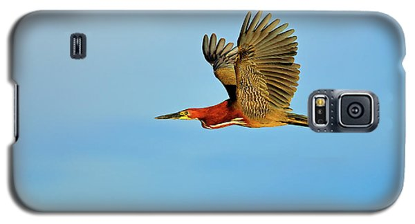 Rufescent Galaxy S5 Case by Tony Beck