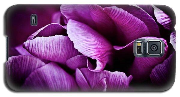 Ruffled Edge Tulips Galaxy S5 Case by Joann Copeland-Paul