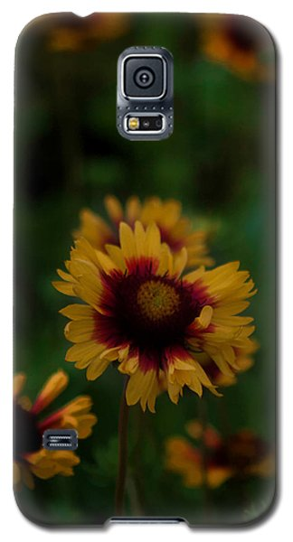 Galaxy S5 Case featuring the photograph Ruffled Up by Cherie Duran