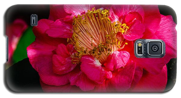 Galaxy S5 Case featuring the photograph Ruffles Of Pink  by John Harding