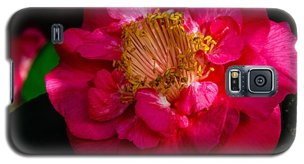 Ruffles Of Pink  Galaxy S5 Case by John Harding
