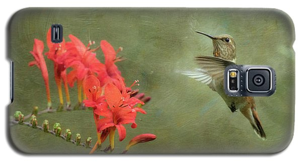 Galaxy S5 Case featuring the photograph Rufous Hummingbird And Crocosmia by Angie Vogel