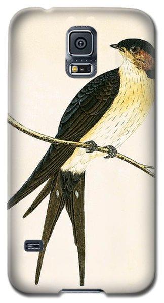 Rufous Swallow Galaxy S5 Case by English School