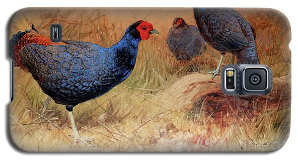 Rufous Tailed Crested Pheasant Galaxy S5 Case