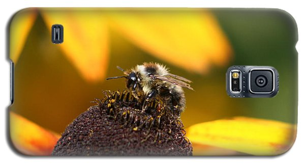 Rumble Bee Galaxy S5 Case