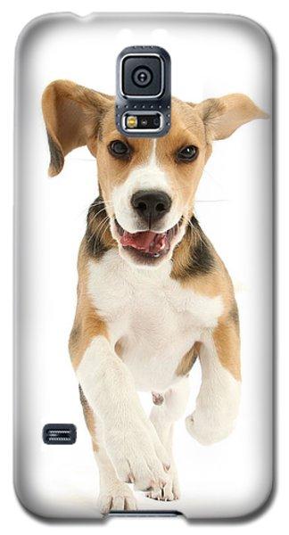 Run For The Pleasure Of It Galaxy S5 Case