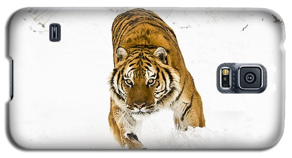 Running Tiger Galaxy S5 Case