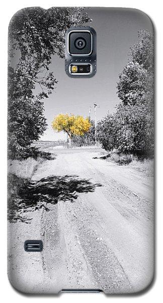 Rural Autumn Splash Galaxy S5 Case